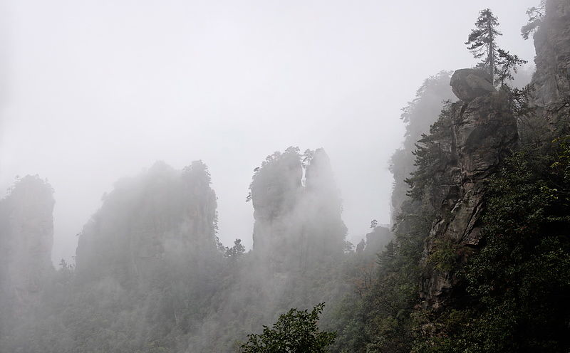 Limestone pillars and peaks shrouded in cloud, from the slopes of Huangshizhai, 1048m, in the subtropical Wulingyuan Scenic A...