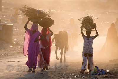 Women sweep up and burn garbage on a dusty desert road after the Pushkar Camel Fair, Pushkar, Rajasthan, India. Air pollution...