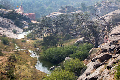 Ancient fig trees, a creek, and a temple complex dating to the 7th century, Ajaypal, Rajasthan, India