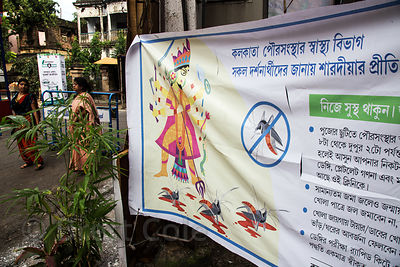 Interesting sign with the fierce warrior Goddess Durga slaying mosquitoes (anti-malaria message), on display during the Durga...