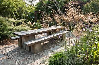 Chunky oak table and benches on a sunny terrace beside the house, framed by Stipa gigantea, Verbena bonariensis and Cornus controversa 'Variegata'. The 'Garten' Garden, Lower Treculliacks Farm, Falmouth, Cornwall, UK