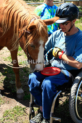 Man in a wheelchair with a horse