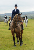 Lisa Freckingham - The Cottesmore Hunt at Bleak House