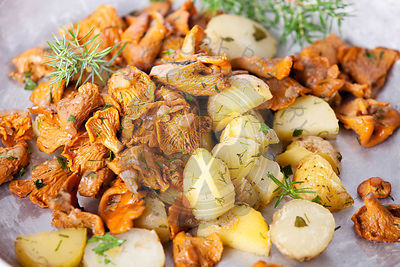 Fried chanterelles with potatoes and onion in on plate
