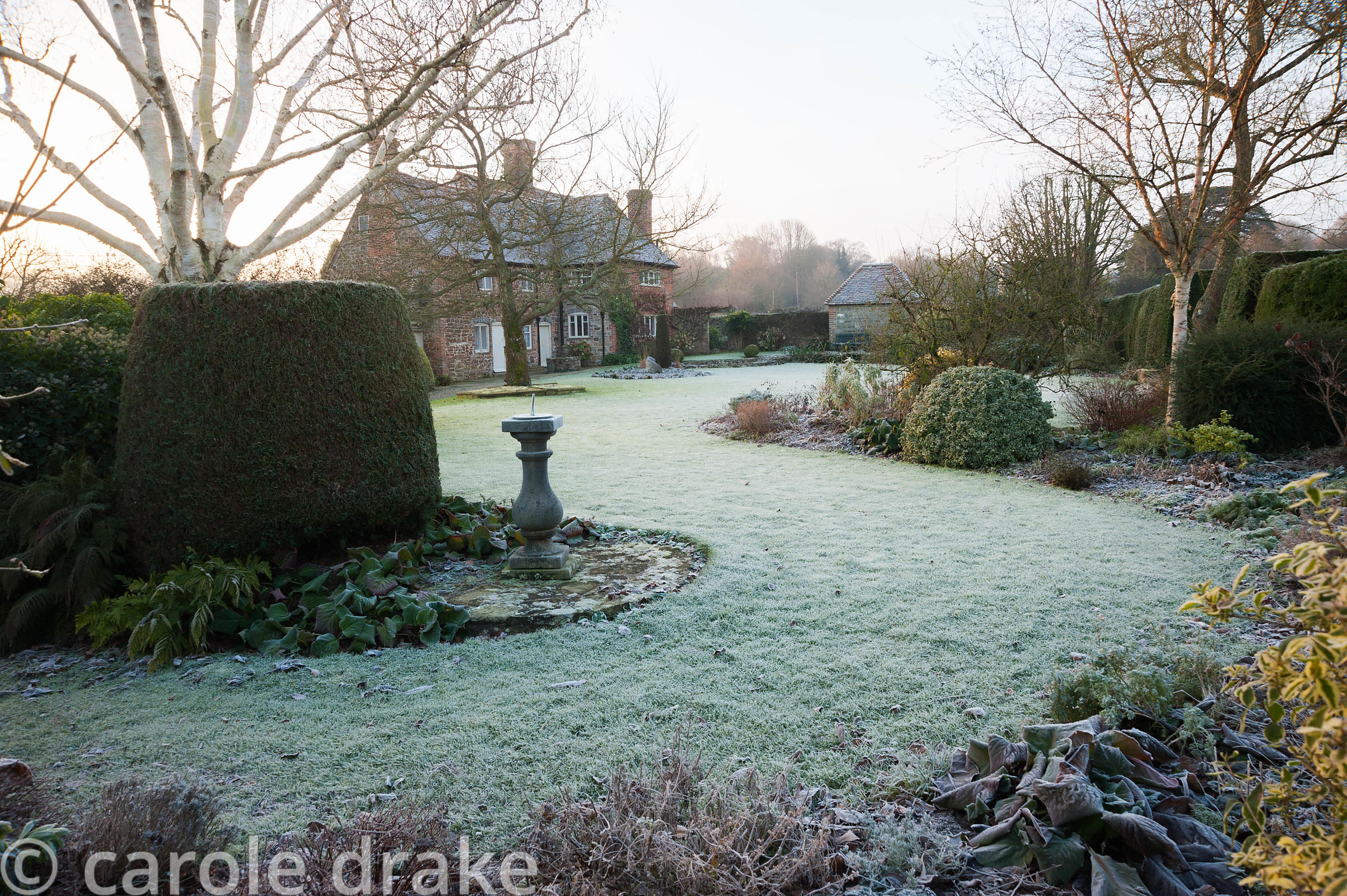 Frosty garden with mixed borders, clipped evergreens, white stemmed birches and a birdbath with Elizabethan house beyond. Coa...