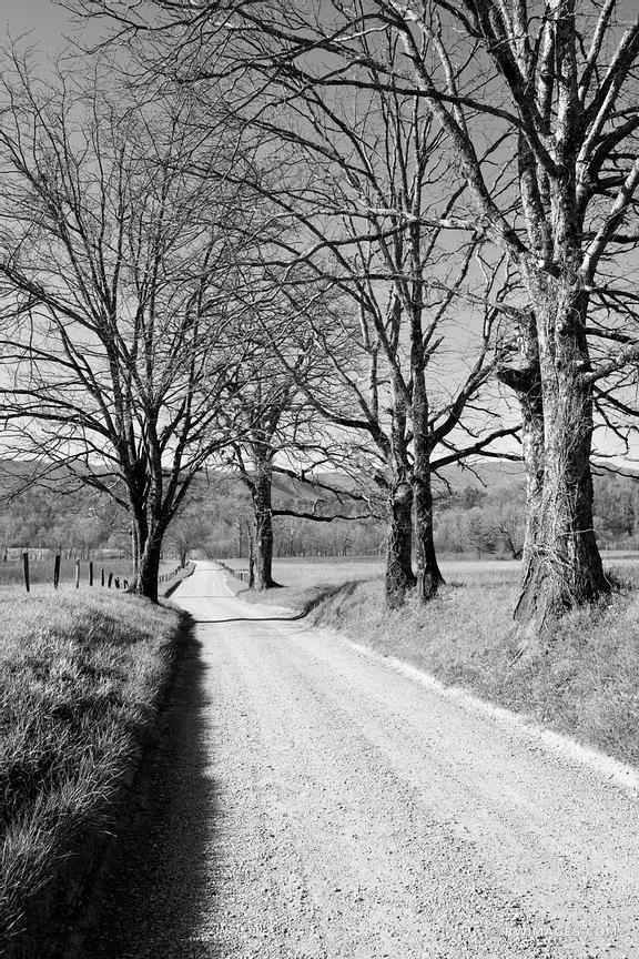 HYATT LANE CADES COVE SMOKY MOUNTAINS BLACK AND WHITE VERTICAL