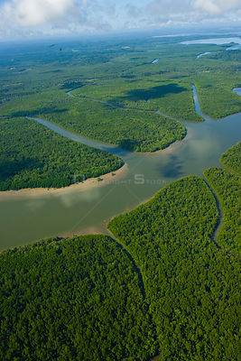 Aerial view of lowland rainforest and tributaries of the Kinabatangan River, Sabah, Malaysia  2007