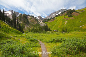 Royal Basin Trail in Olympic National Park