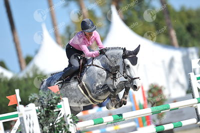 Oliva, Spain - 2018 October 2: 7 years old 1m30 during CSI Mediterranean Equestrian Autumn Tour I.(photo: 1clicphoto.com)