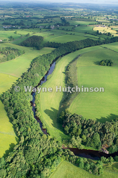 River Eden, edged by native woodland, winding through the countryside near Appleby, Cumbria, UK.
