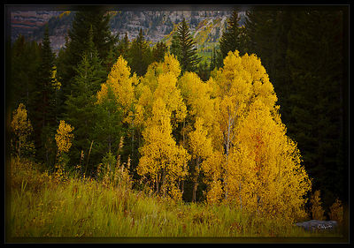 090928_AspensTimp_PD