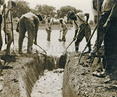 Workers during 1920s dig mosquito-control ditch