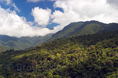 A rare clear day reveals the splendor of the Las Nubes Rainforest Reserve, Costa Rica. Just over the ridge is Chirripo, the t...