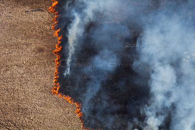 Aerial photo of grassland fire, Western Cape, South Africa, August 2009