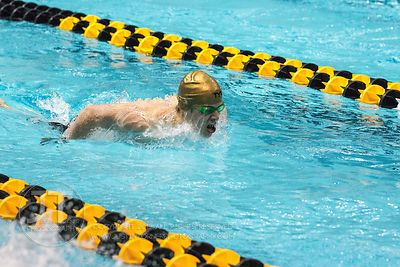 Notre Dame, Hawkeye Invitational Swimming and Diving Meet, December 7, 2014