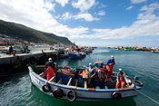 Fishing boat in the harbour, Kalk Bay, False Bay, South Africa