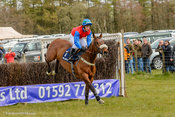 Afterclass Crawford Robertson, Balcormo Point-to-Point on 23 Apr 2016.