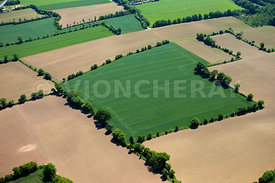 photo de champs agricoles