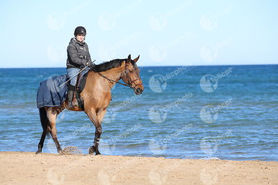 Oliva, Spain - 2018 January 16: beach during CSI Mediterranean Equestrian Tour 1..(photo: 1clicphoto.com I Mariann Marko)