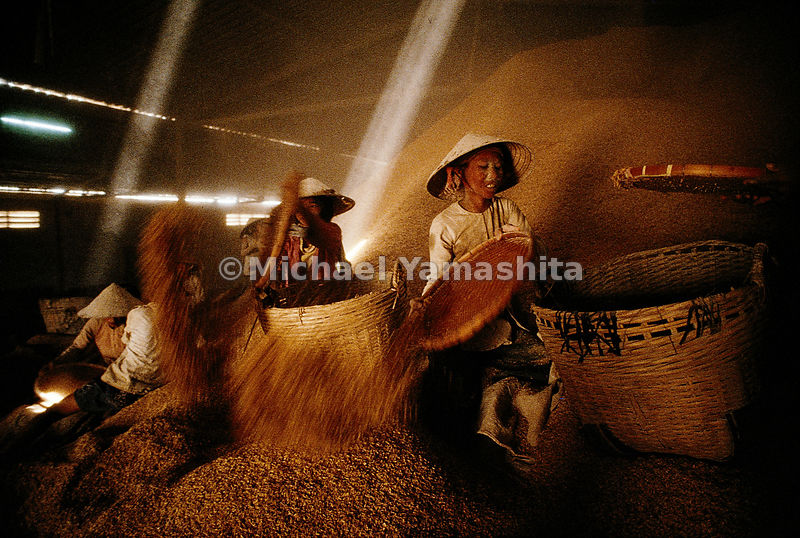 Women separate rice husks, used for animal feed, from the grain destined for human consumption by shaking the rice in woven b...