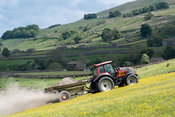 Spreading lime on an Dales dillower meadow to increase the soils fertility. Yorkshire Dales, UK.