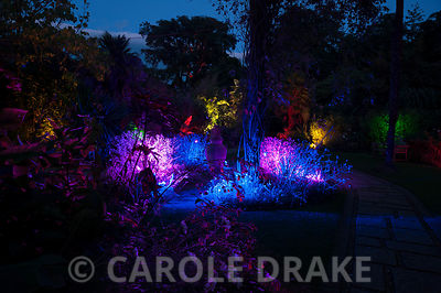 The Victorian garden illuminated.