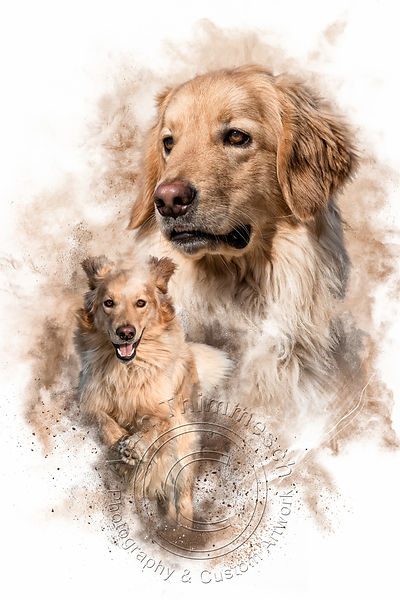 Art-Digital-Alain-Thimmesch-Chien-5