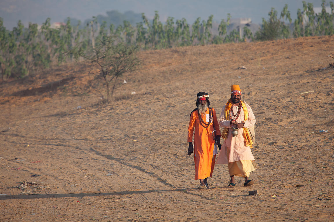 Fake sadhus (holy men) on their way to work for the day, trying to get money from tourists in Pushkar, Rajasthan, India