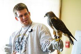 Coralville Lake Bald Eagle Watch and Expo