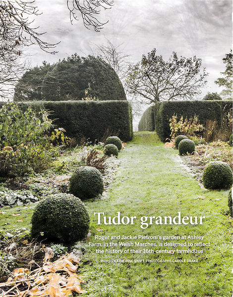 Ashley Farm, Gardens Illustrated, December 2015