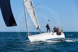 Maris Otter, GBR3519L, Legend 35.5, 20160731876