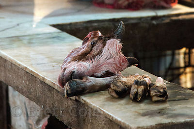 A goat head and feet sit on a bench at a market in Shyambazar, Kolkata, India. Hygenic standards with regards to meat process...