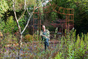 Nick Priestland, creator of the garden at The Cors, Laugharne, Camarthenshire, Wales, UK