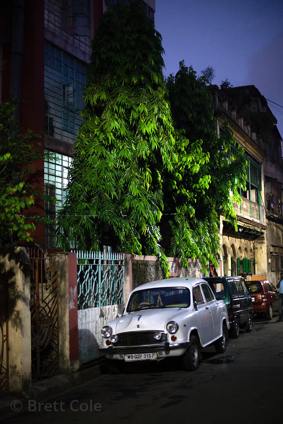 Street scene at night in Bowbazar, Kolkata, India.