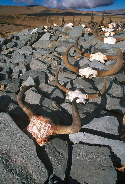 Mani stones and carved yak skulls