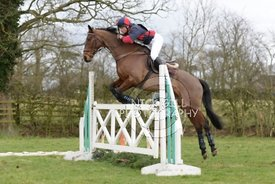 bedale_hunt_ride_8_3_15_0033