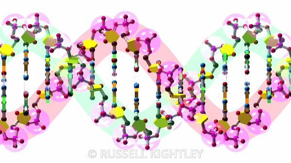DNA-64-animation-orthographic-FHD-Russell-Kightley