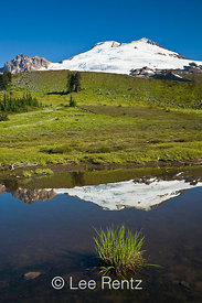 Mountain tarn with the Railroad Grade lateral moraine in front of Mt. Baker, Mt. Baker–Snoqualmie National Forest, Washington...