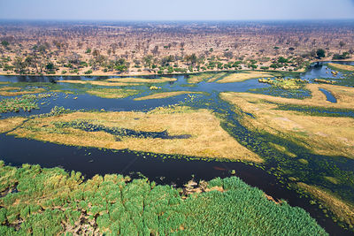 Aerial view of the swamps of the Linyanti River, north Botswana near border with Namibia