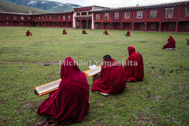 Young monks spend most of their days studying Buddhist scripture both inside Garthar Monastery and En Plein Air.