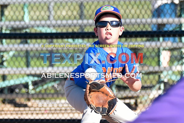 05-06-16_BB_LL_DIX_Farm_Wildcats_v_Gators_BR_513