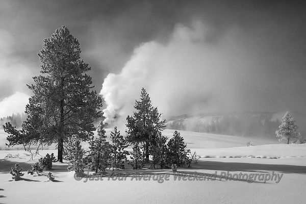 Yellowstone Winter 2