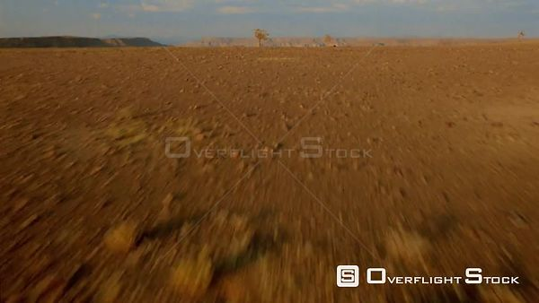 Aerial wide angle shot flat sandy desert terrain with two trees and mountain range in background, over edge to river in valle...