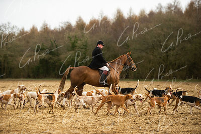 South & West Wilts Hunt