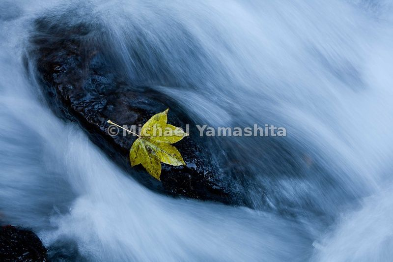 Odaira Onsen, located at the source of the Mogami River, fall foliage adds its brilliance to the headwaters