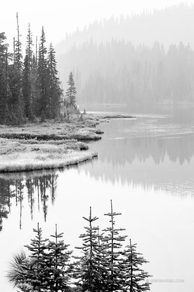 REFLECTION LAKE MOUNT RAINIER NATIONAL PARK WASHINGTON BLACK AND WHITE VERTICAL
