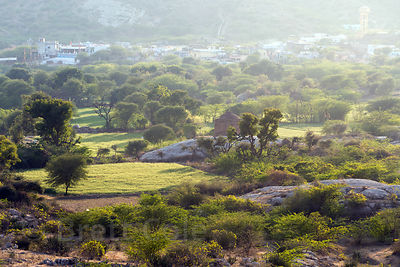View of bucolic, sun-drenched farmland and ancient rock temples, Chat Sardarpura vilage, Rajasthan, India
