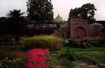 India - New Delhi - The Rose Garden