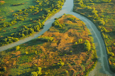 Aerial view over the Danube delta rewilding area, showing various waterways, Romania, June 2012