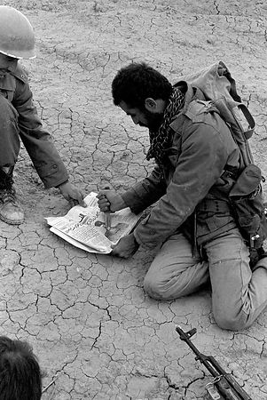 Iran-Iraq war 1980-83